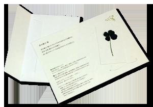 ミームオリジナル四つ葉や五つ葉の「クローバーカード」写真