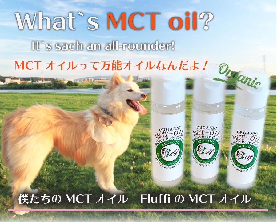 MCT オイルを詳しく紹介