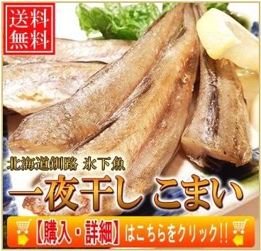 送料無料 一夜干し氷下魚コマイ 35尾で1kg 北海道釧路