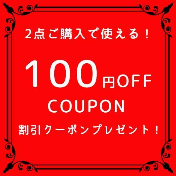 2点以上購入でお得!100円オフ!