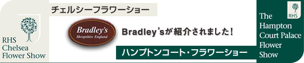 Bradley'sが紹介されました!