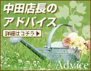 中田店長のアドバイス