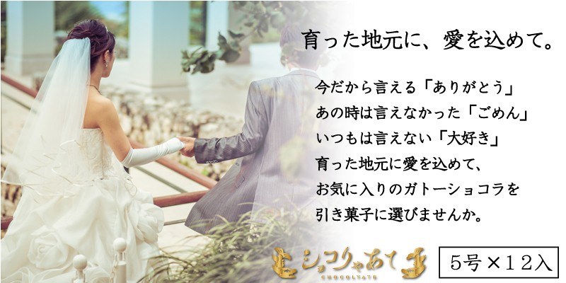 名古屋クラシック ショコりゃあて5号まとめ買い