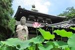 頭陀袋本来の使い方として、 仏閣や寺院巡