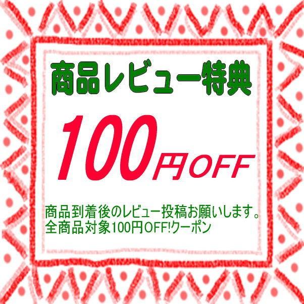 レビュー投稿で100円OFF!クーポン