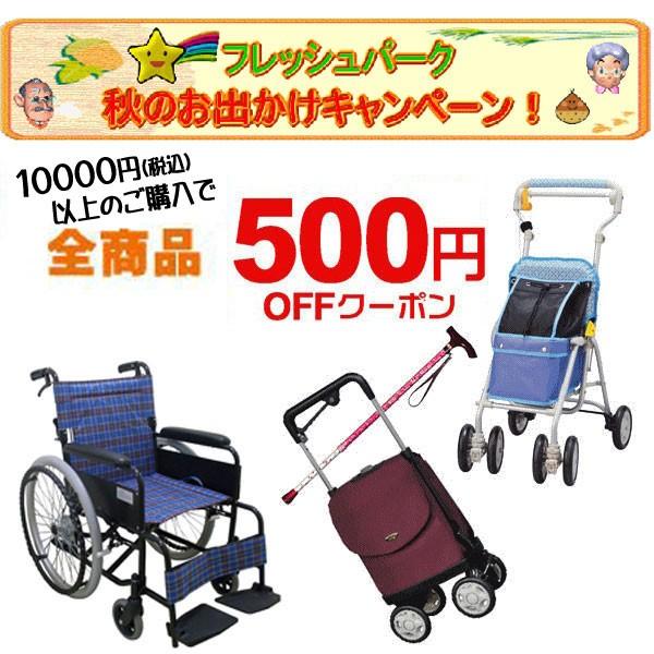 【介護用品500円OFF】秋のお出かけキャンペーン