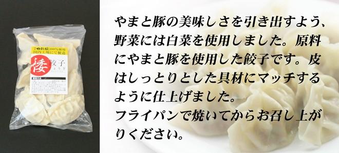 倭餃子説明