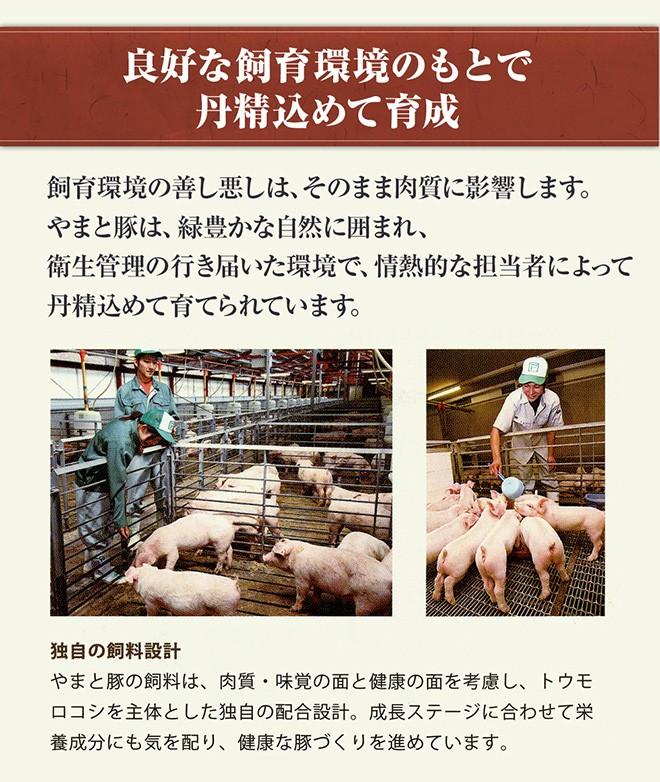 やまと豚とは