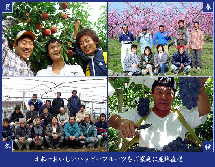 日本一おいしいハッピーフルーツをご家庭に産地直送