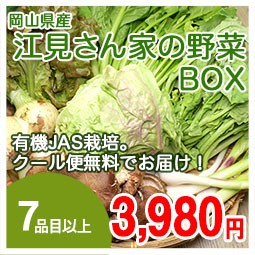 江見野菜box