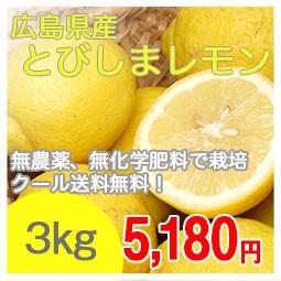 とびしまレモン