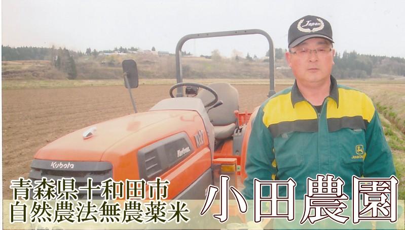 青森県十和田市 自然農法無農薬米 小田農園