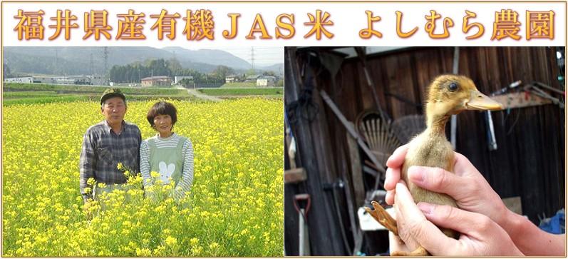 福井県産有機JAS米 よしむら農園