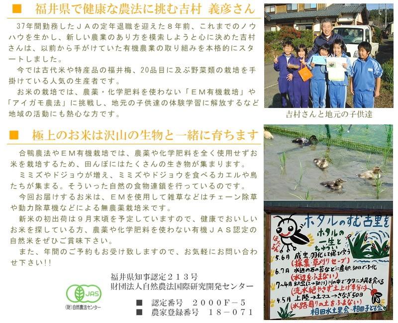 福井県で健康な農法に挑む吉村義彦さん