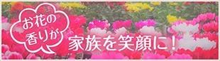 お花の香りが家族を笑顔に!