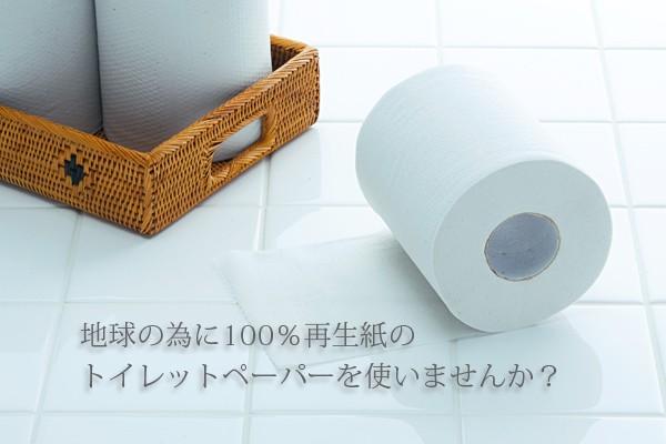 トイレットペーパー e-style
