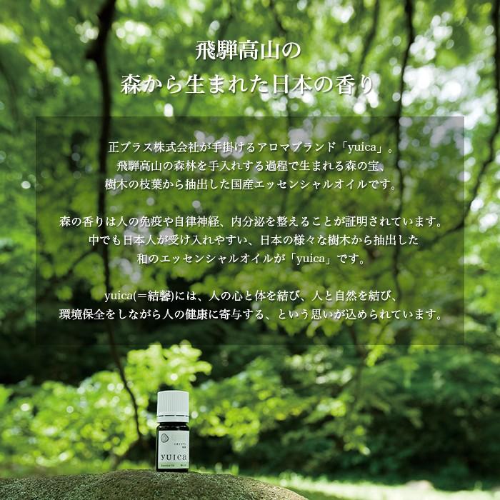 アロマおしぼり 紙おしぼり VBアロマプレミアム with yuica 1ケース(300本)