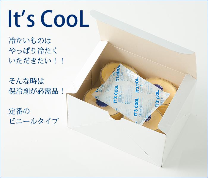 保冷剤 イッツクール20g