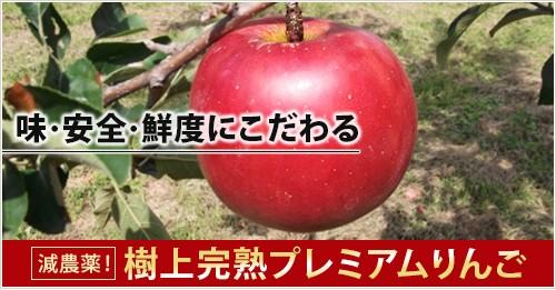 味・安全・鮮度にこだわる  減農薬!樹上完熟プレミアムりんご