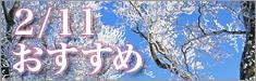 02/11おすすめ商品