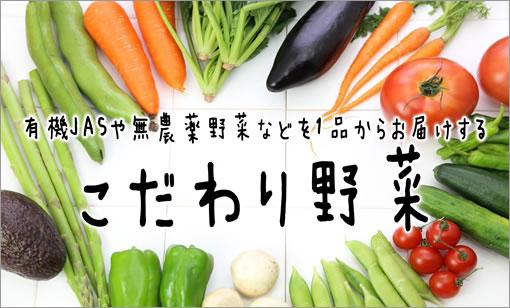 有機JASや無農薬野菜など1品からお届けする「こだわり野菜」