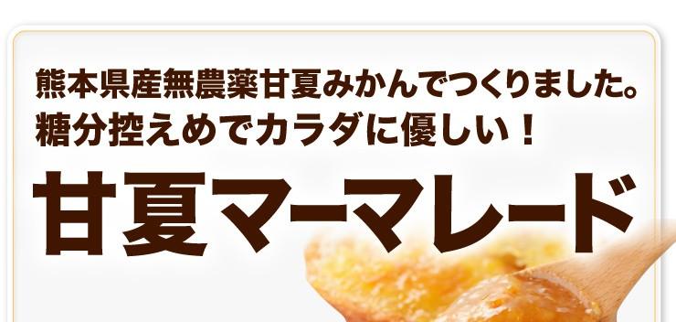 熊本県産無農薬甘夏みかんでつくりました。糖分控えめ!甘夏マーマレード