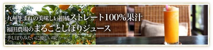 濃厚なストレート100%ジュース