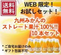 九州みかんの個性を楽しめる飲みくらべストレート100%ジュースセット