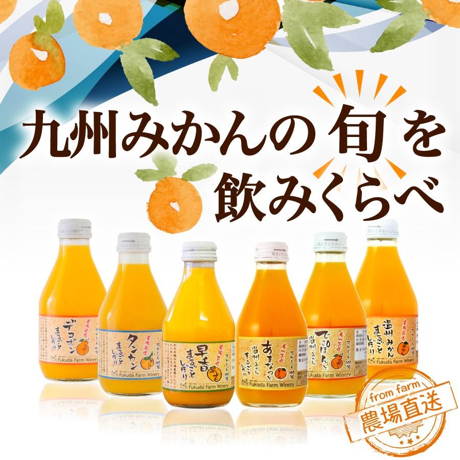 九州みかんの旬を飲みくらべ 農場直送