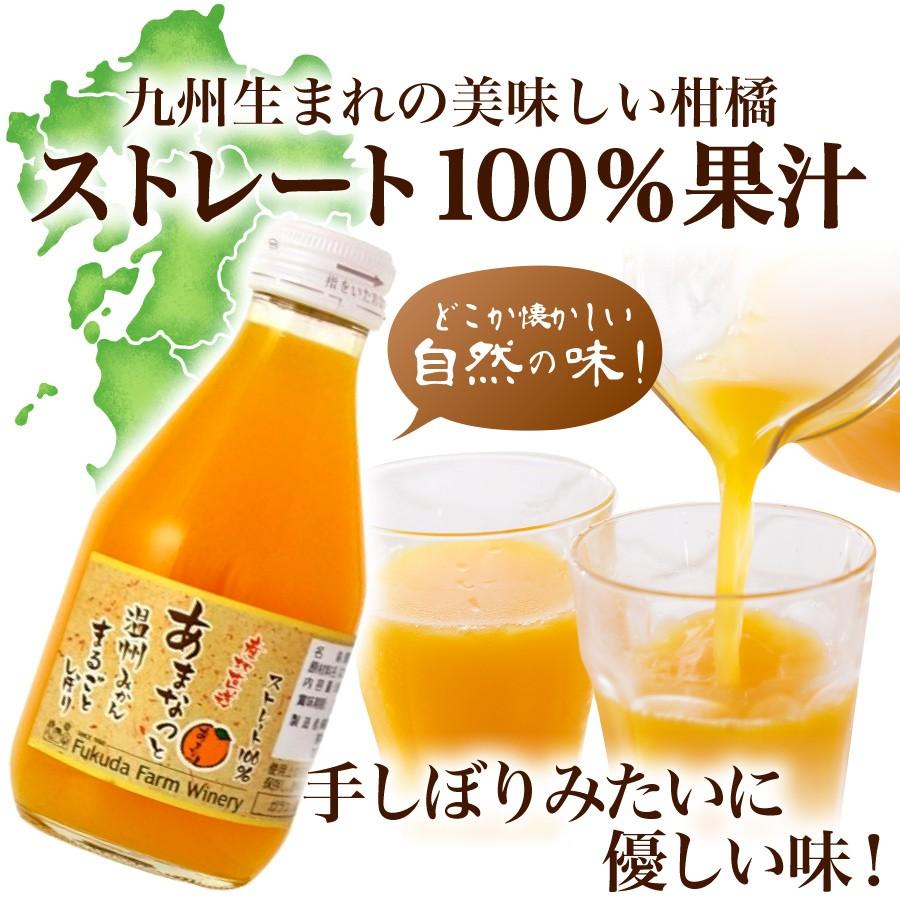 九州生まれ 美味しい柑橘 ストレート100%果汁 自然の味 手絞りみたいに優しい味