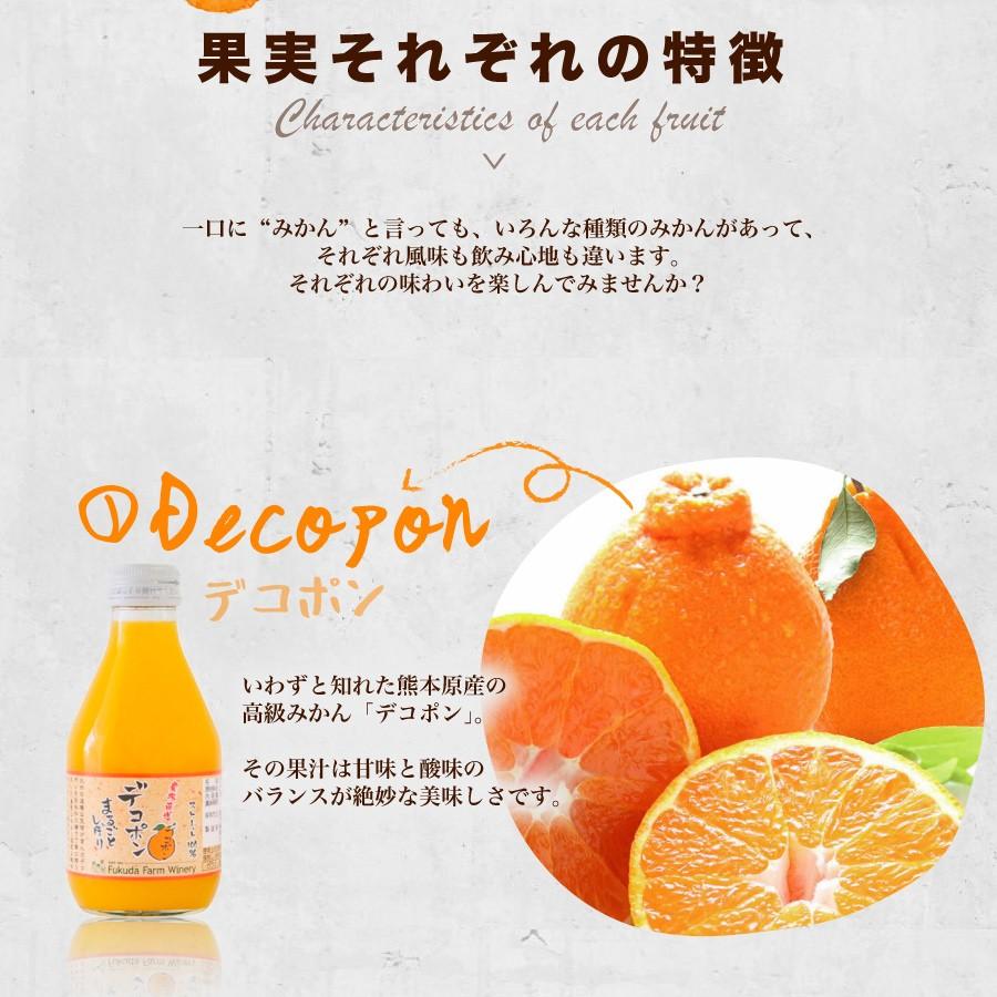 果実それぞれの特徴 1デコポン 熊本産の高級みかん 甘味と酸味が絶妙