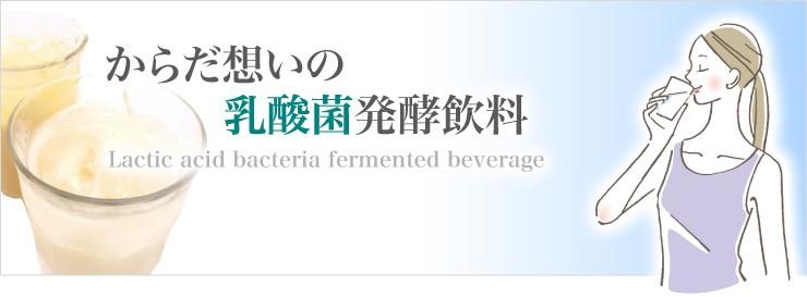 からだ想いの乳酸菌発酵飲料