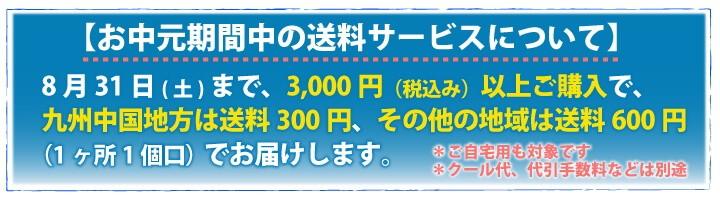 送料サービスキャンペーン実施中!8月31日まで