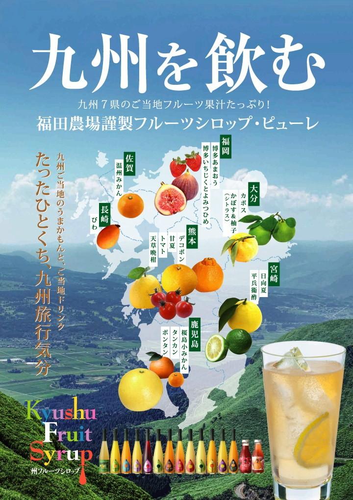 たったひとくち、九州旅行気分味わえる、九州果実のシロップ