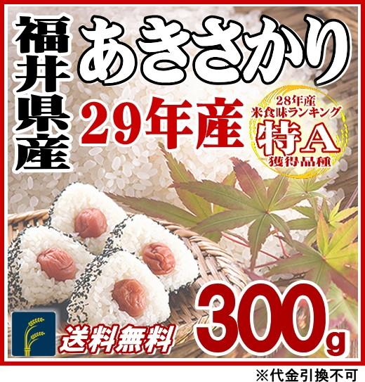 福井あきさかり300g