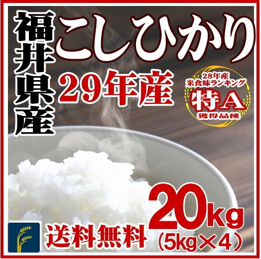 福井コシ20kg
