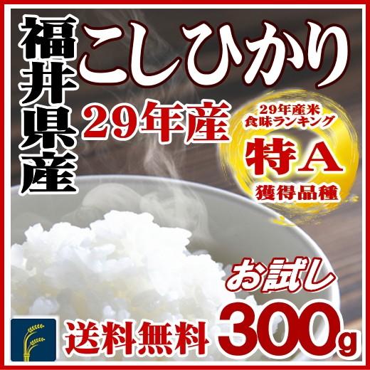 福井コシ300g
