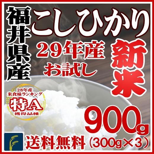 福井コシ900g