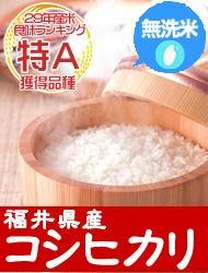 無洗米コシヒカリ特A