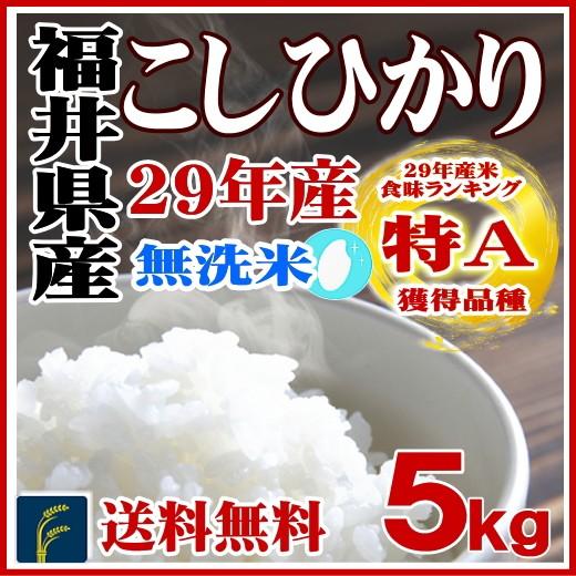 無洗米福井コシ5kg