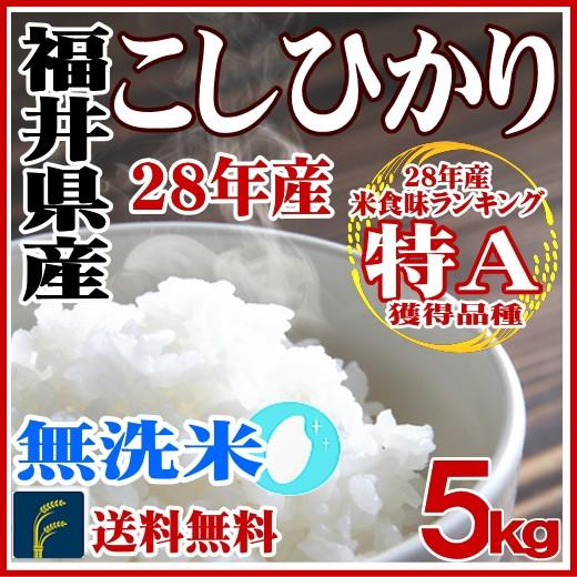 無洗米福井コシ5k