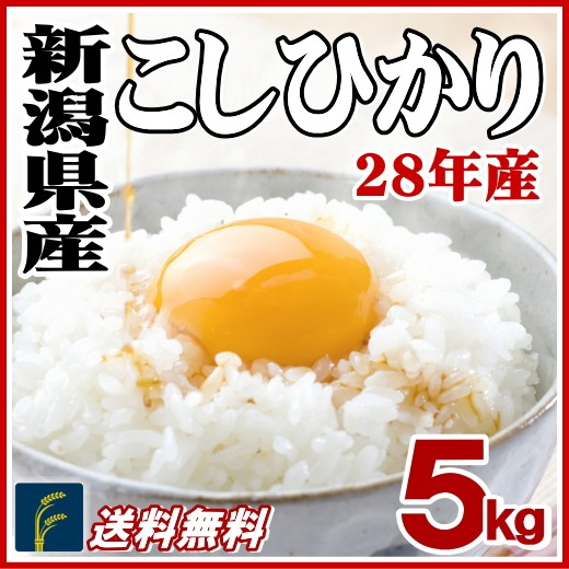 新潟コシ5kg