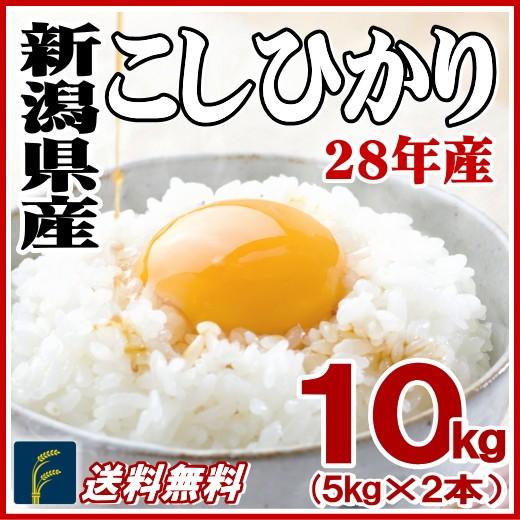 新潟コシ10k
