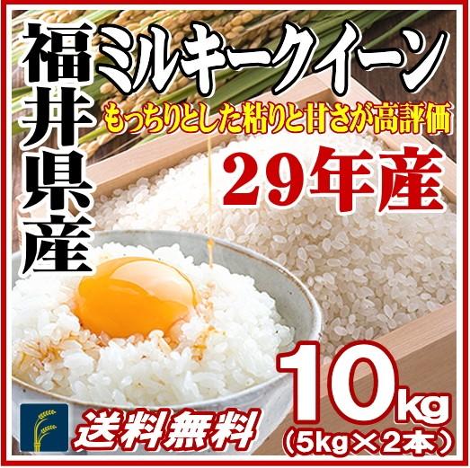 福井ミルキー10kg