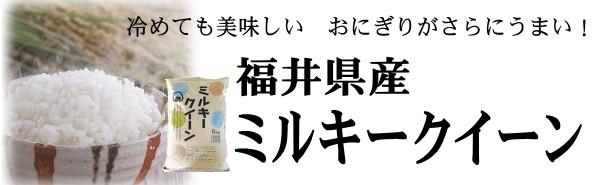 福井ミルキー