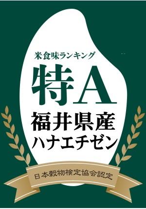 特A福井ハナエチゼン