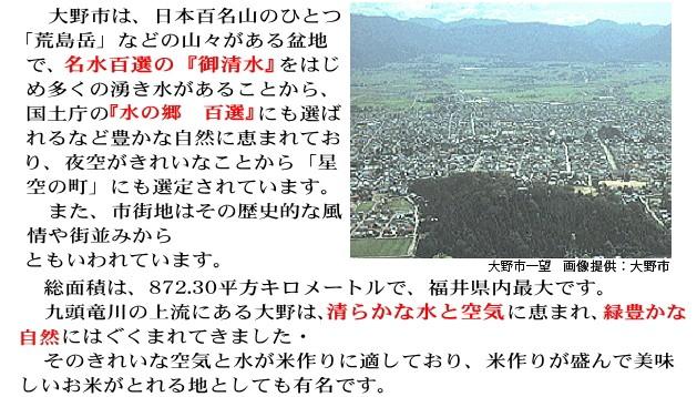 福井県大野市1