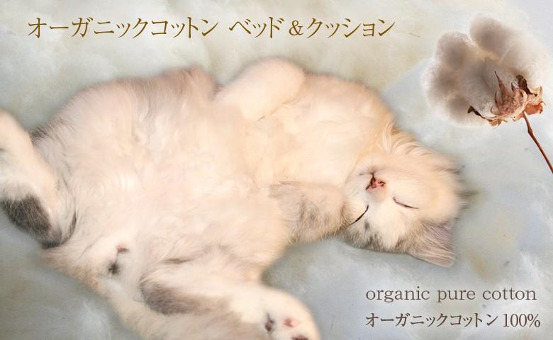 猫 ベッド オーガニックコットン