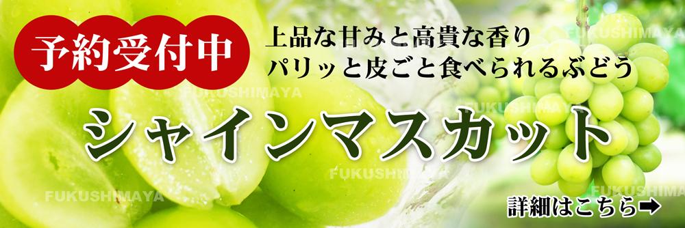 毎年大好評の福島県産シャインマスカット 予約受付中!