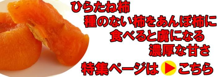 ひらたね柿の特集ページへ